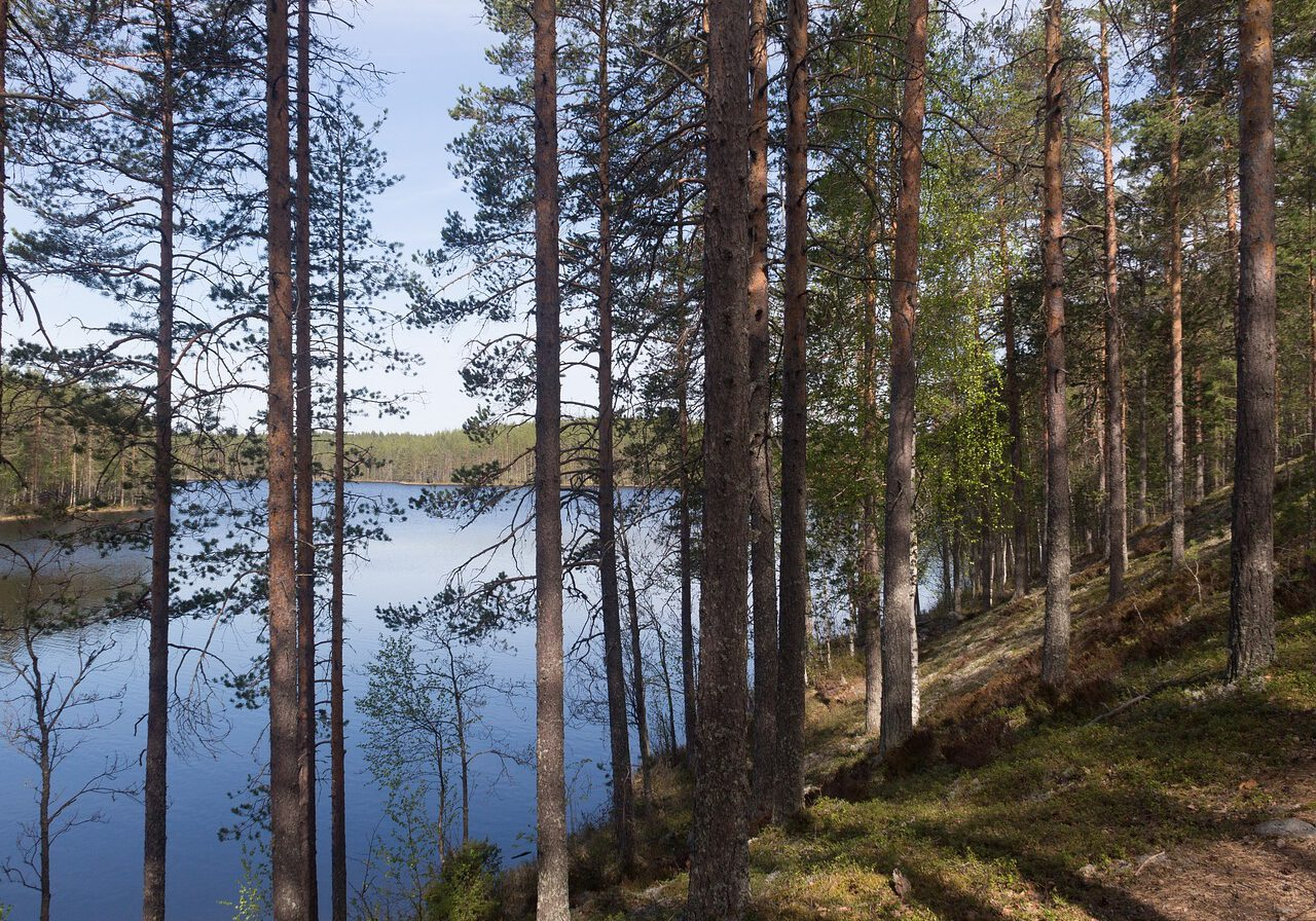 finnish-2073681_1280